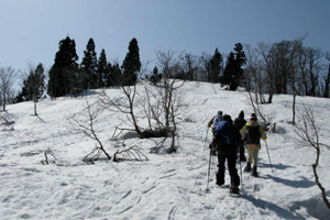 Snowboard & Snow shoe tour img3